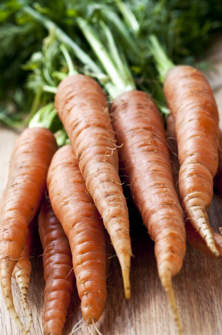 morkų ir varpos augimas patikrino kaip padidinti varpa