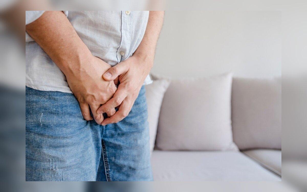 erekcija sustoja lytinio akto metu seksualinio nario storis 13 cm